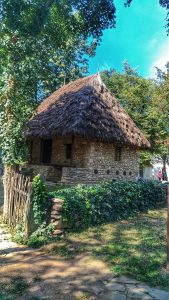 House - The Dimitrie Gusti Village Museum, Bucharest