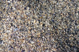 Sea pebbles - Black Sea, Romania 2