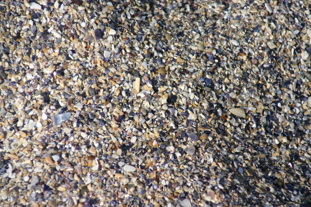 Sea pebbles - Black Sea, Romania 2
