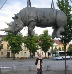 The Hanging Rhino - Potsdam