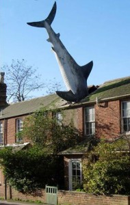 The Shark - Headington, Oxford