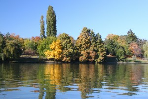 Autumn colors - Herastrau park - Bucharest, Romania - water, trees - 7