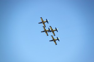 Baltic Bees formation at BIAS 2013