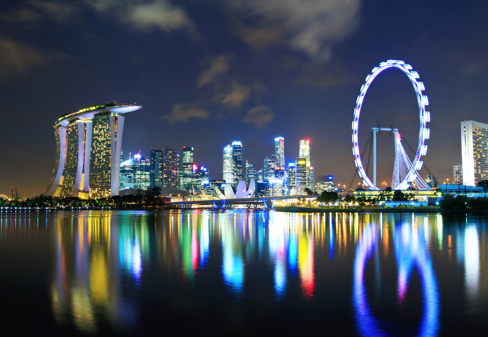 Singapore flyer and city