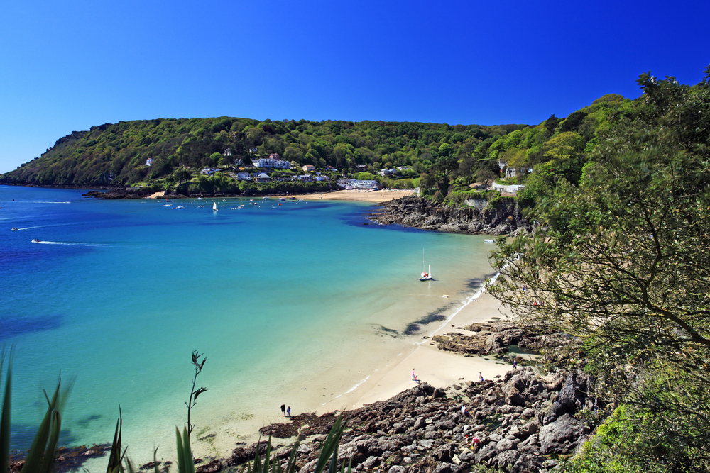 Salcombe ria (estuary)
