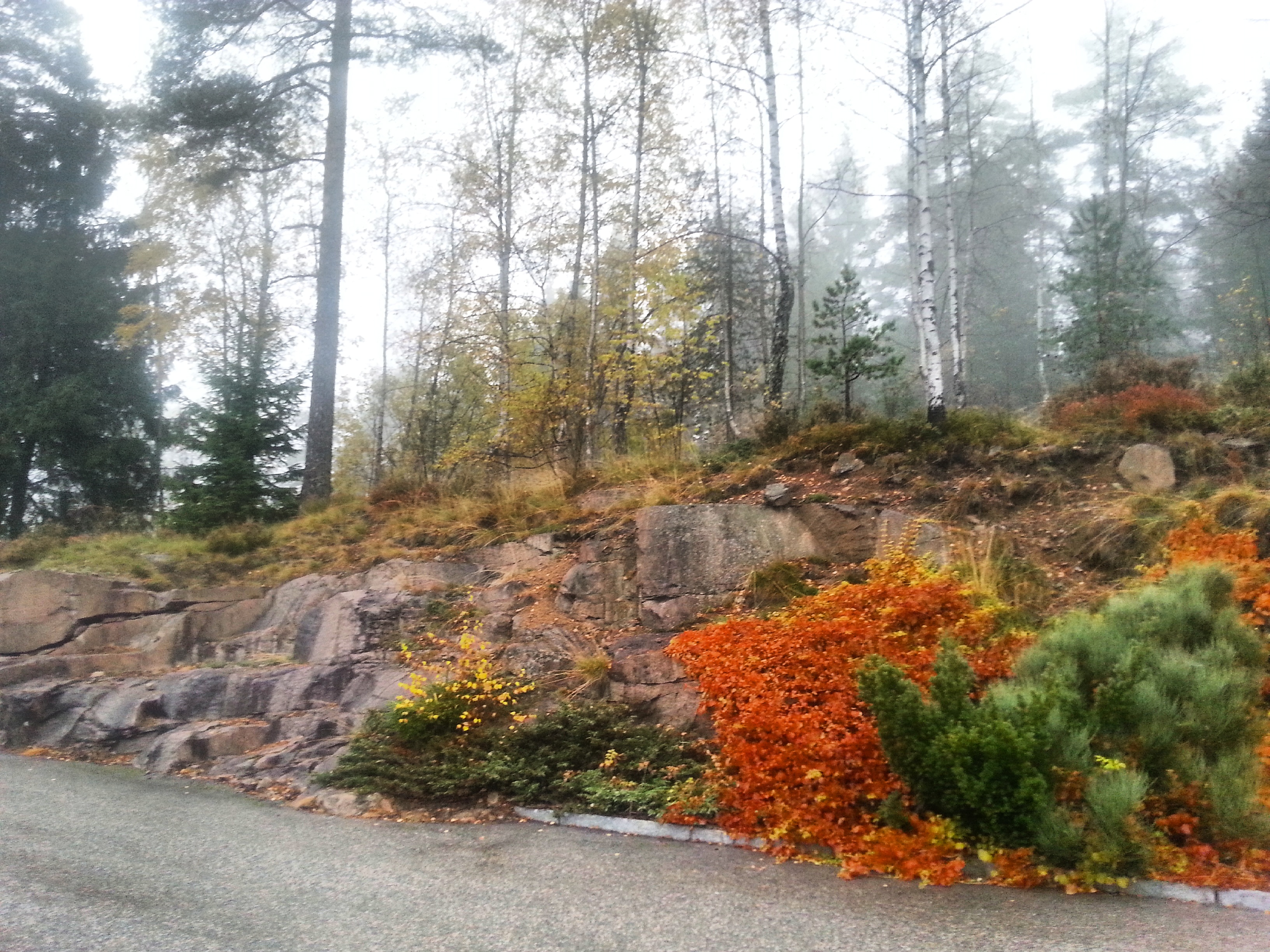 Oslo, Norway - fall colors