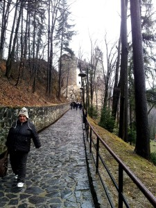 Road to Bran Castle