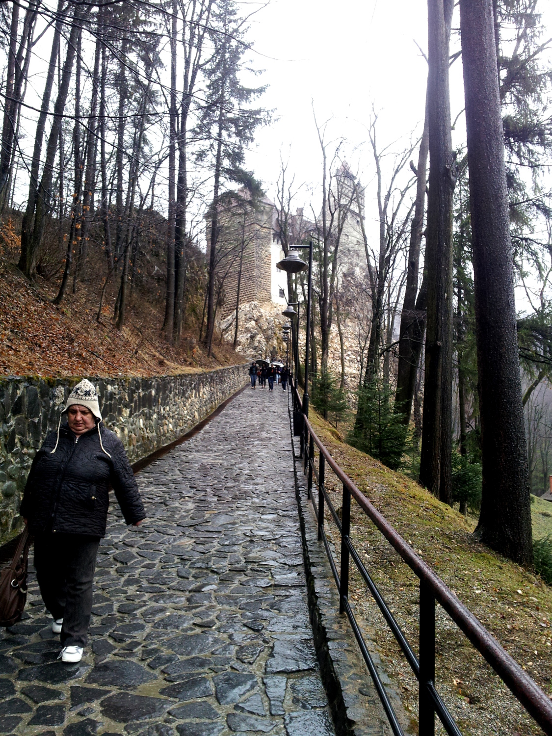 Road to Bran Castle