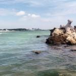 The Black Sea - #Romania #travel #Europe #beach #BlackSea