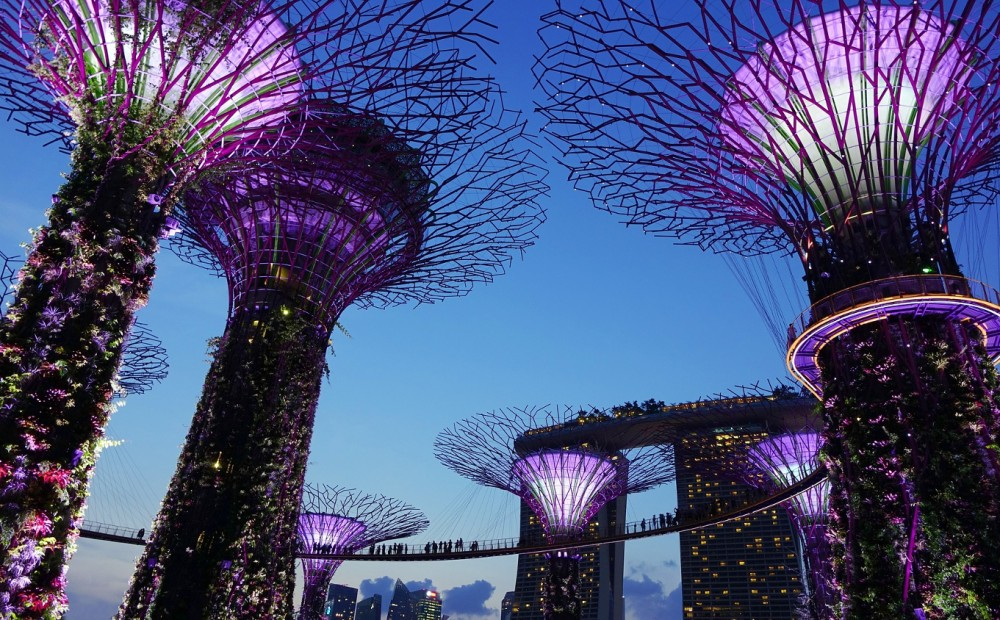 Gardens by the Bay, #Singapore - best places to visit in Singapore #travel