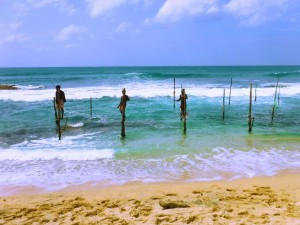 Sri Lanka - Top Destinations to visit in 2017 recommended by #travel bloggers