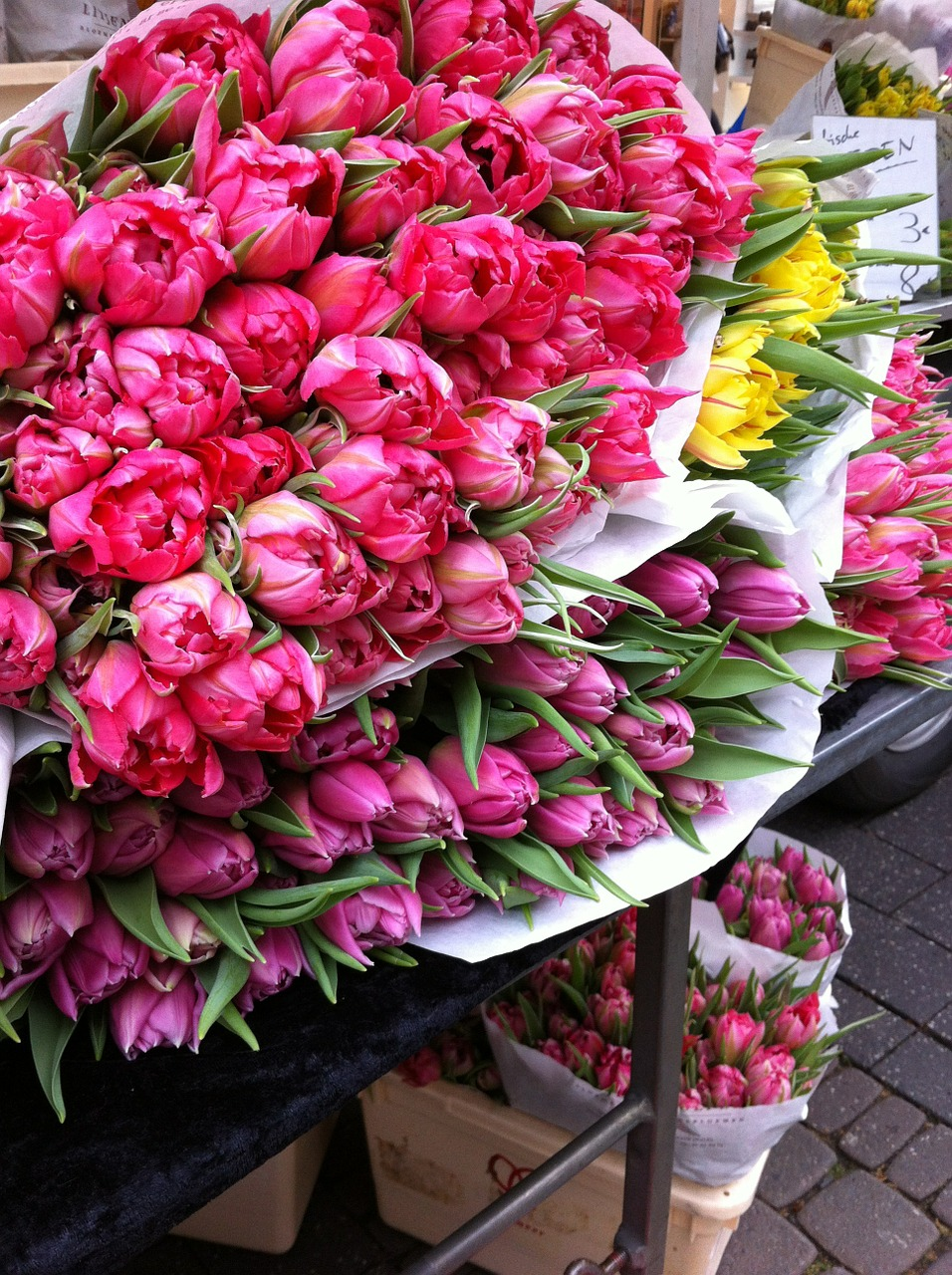 Flower Market of Amsterdam