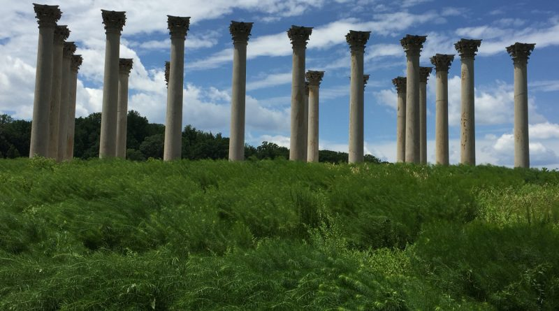 Columns at the National Arboretum