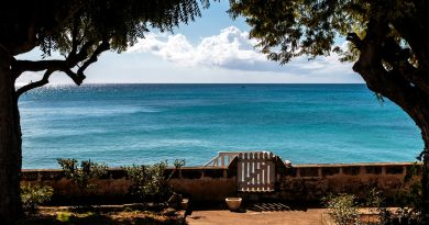 Sun, sand and Barbados: The perfect recipe for the perfect vacation