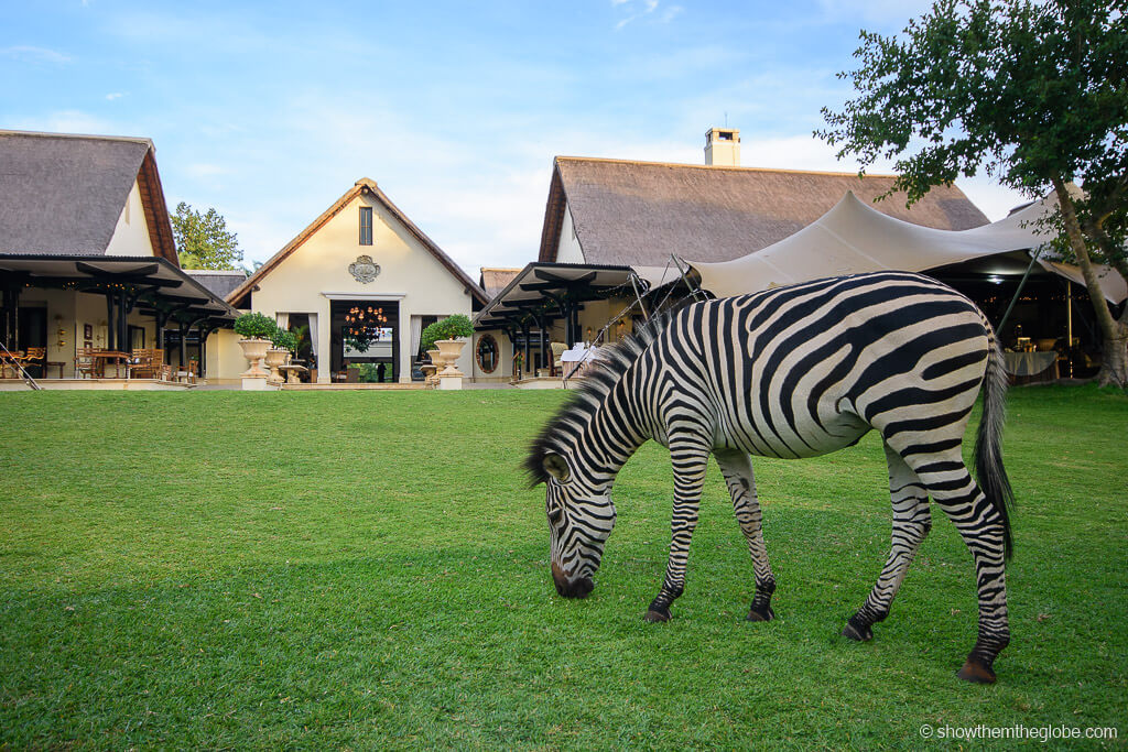 Christmas at Victoria Falls, Zambia/Zimbabwe - This is one of the best alternative Christmas getaways. Read the article to discover more unique Christmas destinations. #christmas #christmasdestinations #christmasholidays #christmastrips #uniquechristmas #unusualchristmas #alternativechristmas