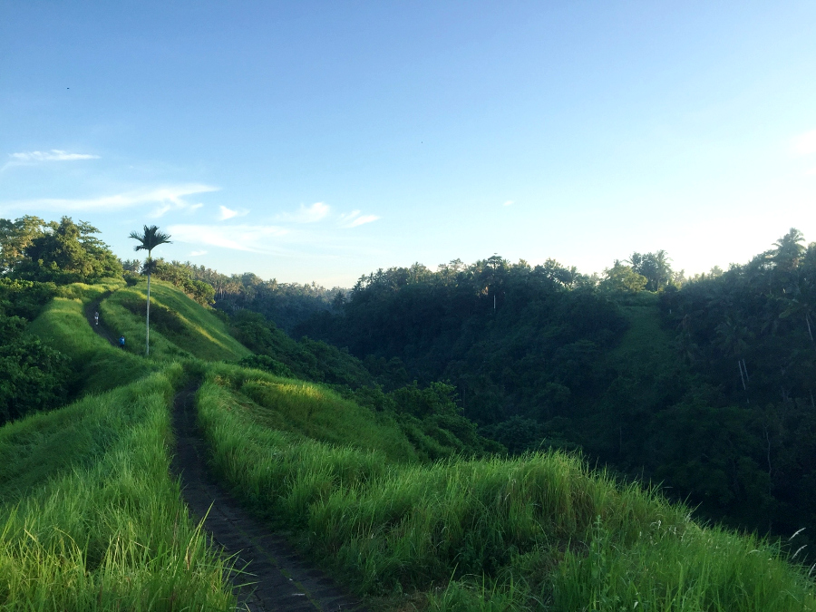 You have to include the Campuhan Ridge Walk, Ubud on your 2-day itinerary for Ubud, Bali, Indonesia. Discover what is there to do in Ubud for 2 days from this Ubud guide. #ubuditinerary #ubudguide #baliindonesia #balitravel #bali #baliholiday #balinese #ubud