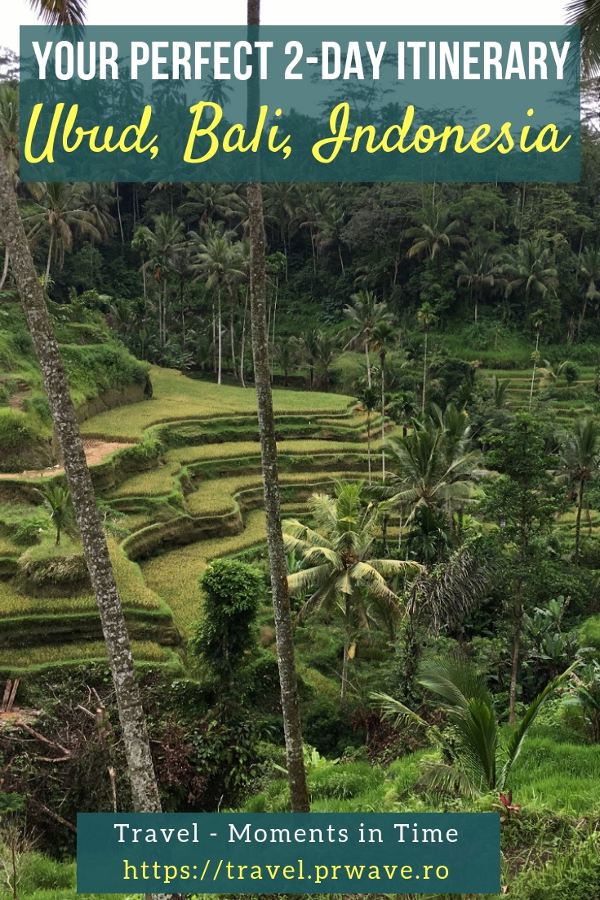 Planning a short trip to Ubud, Bali, Indonesia? Here's how to spend 2 days in Ubud and discover the best places to visit in Ubud, Bali during this time. Learn how to explore Ubud in 2 days, what to see and do from an insider. Save this pin to your boards #ubuditinerary #ubudguide #baliindonesia #balitravel #bali #baliholiday #balinese #ubud