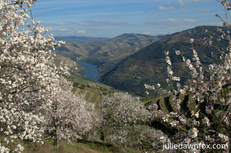 Douro Valley in Portugal is one of the best romantic escapes for couples in Europe. Discover 43 such romantic breaks from the article. #romanticeurope #europe #valentinesday #love #citybreakseurope #romanticdestinations