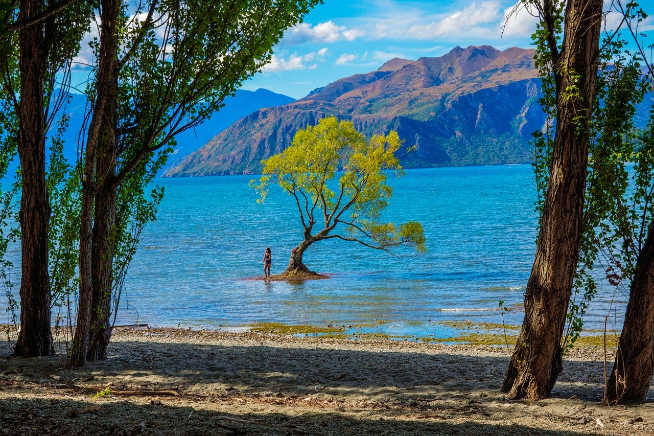 Lake Wanaka is one of New Zealand's landmarks. Here is everything you need to know before visiting South Island, New Zealand. All the best tips for New Zealand's South Island from an insider!