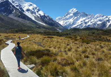 Tips for Visiting South Island, New Zealand