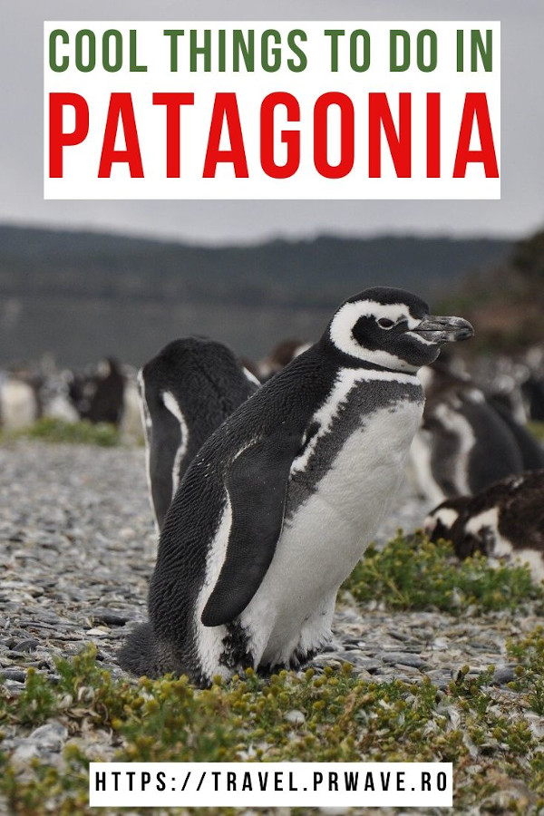 Planning to visit Patagonia, Argentina? Here are some cool things to do in Argentinian Patagonia to add to your Patagonia itinerary. Use these recommendations when createing your Patagonia bucket list. Travel - Moments in Time  #argentina #patagonia #thingstodo #travel #ushuaia #peritomoreno #elchalten #travelmomentsintime